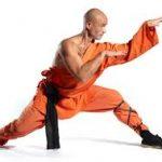kung fu boxeo chino
