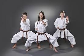 Karate como arte marcial mas popular | Todaslasartesmarciales