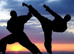 que ser judoka