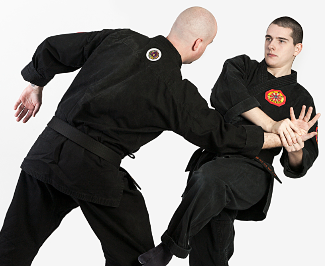 todo sobre el taijutsu y su historia
