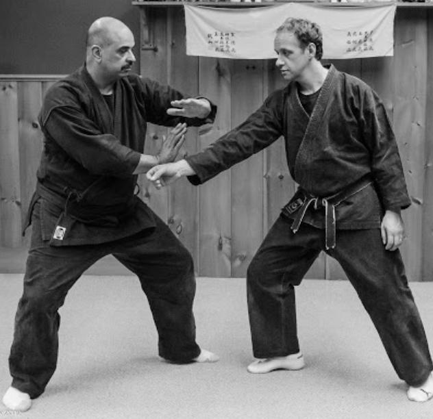 Taijutsu cómo arte marcial