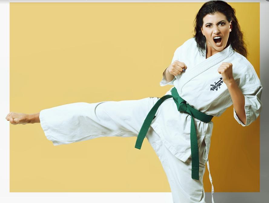 cuáles son las reglas del karate