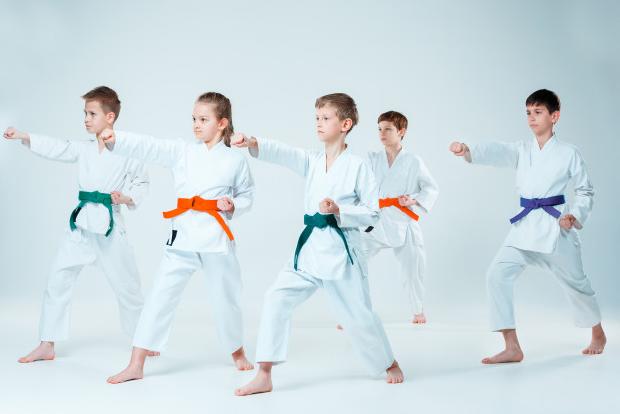 Reglas del Karate Deportivo en Castellano