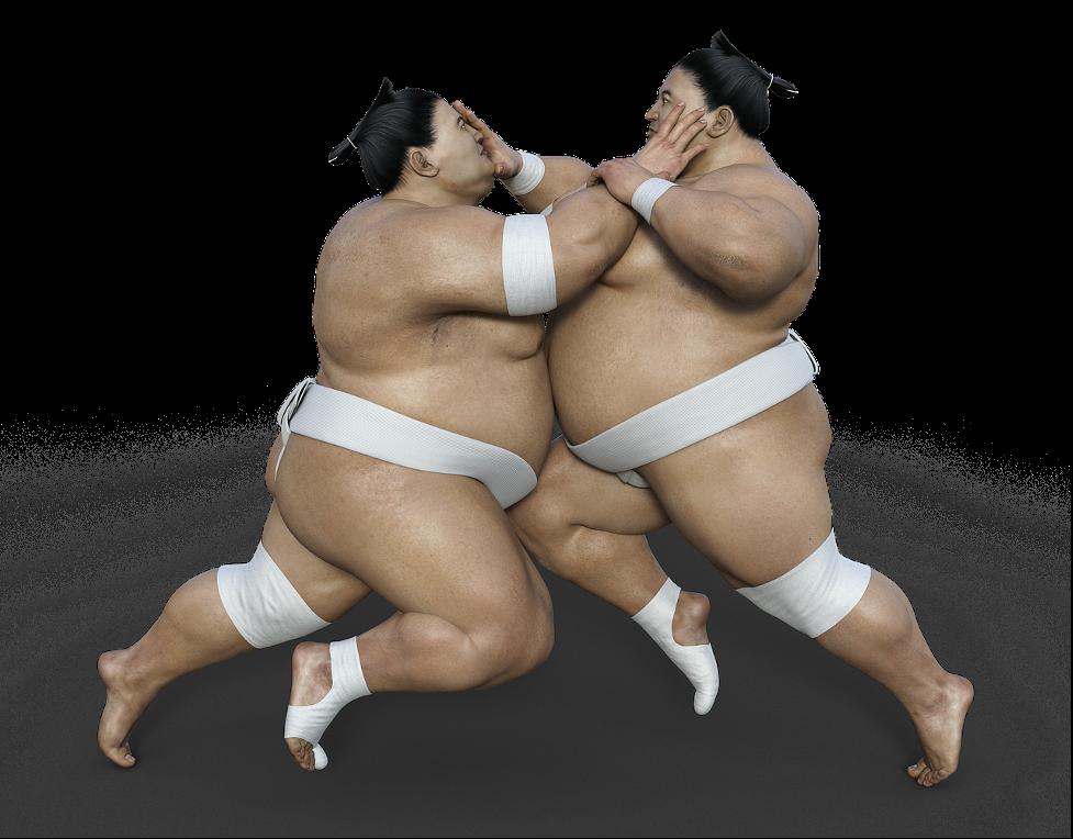vida de un luchador de sumo