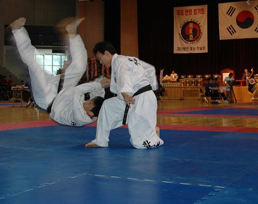 El hapkido y la relevancia del cinturón